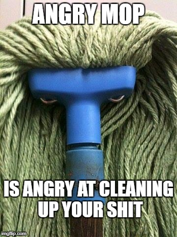 ANGRY MOP IS ANGRY AT CLEANING UP YOUR SHIT | image tagged in wtender mob | made w/ Imgflip meme maker