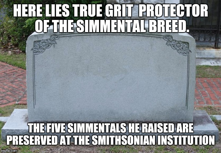 Blank Tombstone | HERE LIES TRUE GRIT  PROTECTOR OF THE SIMMENTAL BREED. THE FIVE SIMMENTALS HE RAISED ARE PRESERVED AT THE SMITHSONIAN INSTITUTION | image tagged in blank tombstone | made w/ Imgflip meme maker