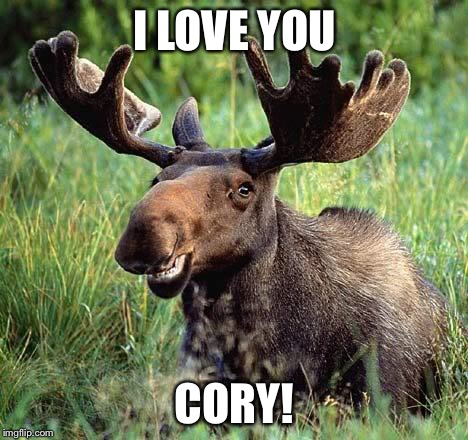I LOVE YOU CORY! | image tagged in smiling moose | made w/ Imgflip meme maker