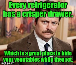 Ron Swanson Meme | Every refrigerator has a crisper drawer. Which is a great place to hide your vegetables while they rot. | image tagged in memes,ron swanson | made w/ Imgflip meme maker