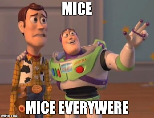X, X Everywhere Meme | MICE MICE EVERYWERE | image tagged in memes,x x everywhere | made w/ Imgflip meme maker