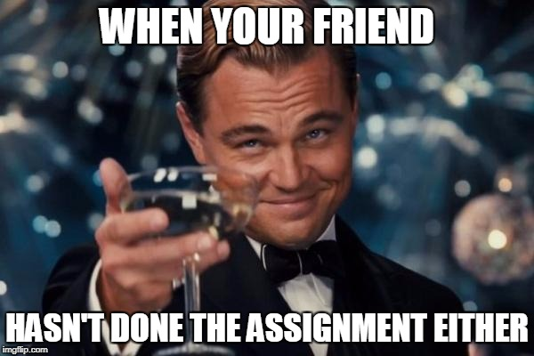 Leonardo Dicaprio Cheers Meme | WHEN YOUR FRIEND HASN'T DONE THE ASSIGNMENT EITHER | image tagged in memes,leonardo dicaprio cheers | made w/ Imgflip meme maker