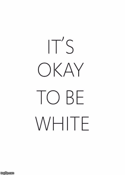 It's Ok To Be White  | IT'S OK TO BE WHITE | image tagged in its ok to be white,memes,meme | made w/ Imgflip meme maker