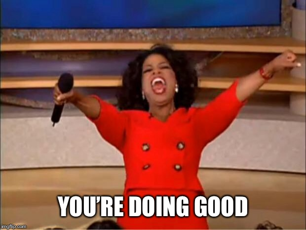 Oprah You Get A Meme | YOU'RE DOING GOOD | image tagged in memes,oprah you get a | made w/ Imgflip meme maker