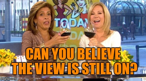 CAN YOU BELIEVE THE VIEW IS STILL ON? | made w/ Imgflip meme maker