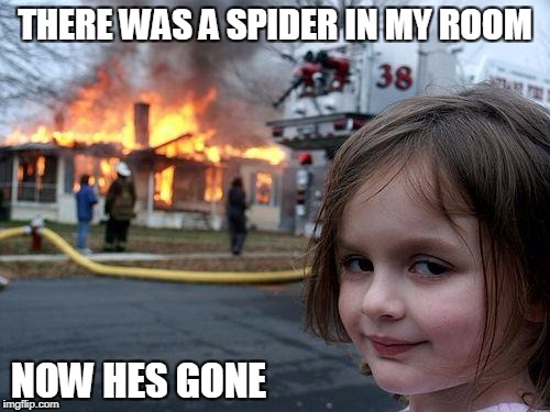 Disaster Girl Meme | THERE WAS A SPIDER IN MY ROOM NOW HES GONE | image tagged in memes,disaster girl | made w/ Imgflip meme maker