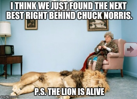 I THINK WE JUST FOUND THE NEXT BEST RIGHT BEHIND CHUCK NORRIS. P.S. THE LION IS ALIVE | image tagged in chuck norris | made w/ Imgflip meme maker