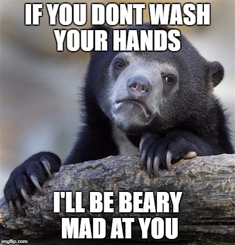 Confession Bear Meme | IF YOU DONT WASH YOUR HANDS I'LL BE BEARY MAD AT YOU | image tagged in memes,confession bear | made w/ Imgflip meme maker