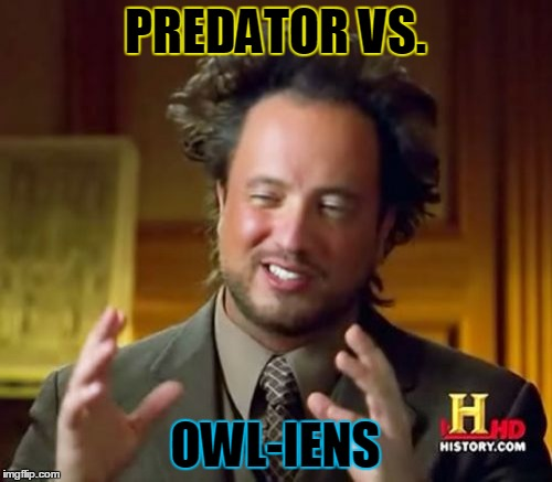 Ancient Aliens Meme | PREDATOR VS. OWL-IENS | image tagged in memes,ancient aliens | made w/ Imgflip meme maker