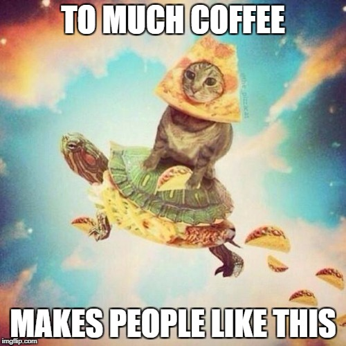Space Pizza Cat Turtle Tacos | TO MUCH COFFEE MAKES PEOPLE LIKE THIS | image tagged in space pizza cat turtle tacos | made w/ Imgflip meme maker