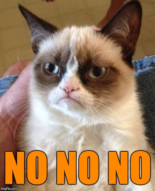 Grumpy Cat Meme | NO NO NO | image tagged in memes,grumpy cat | made w/ Imgflip meme maker
