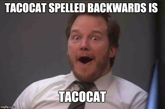 *Illuminati confirmed music plays in the background* | TACOCAT SPELLED BACKWARDS IS TACOCAT | image tagged in that face you make when you realize star wars 7 is one week away | made w/ Imgflip meme maker