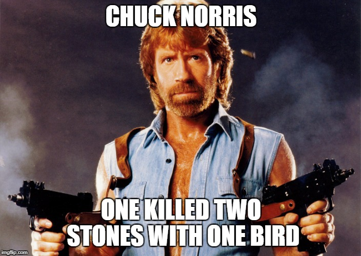 CHUCK NORRIS ONE KILLED TWO STONES WITH ONE BIRD | made w/ Imgflip meme maker