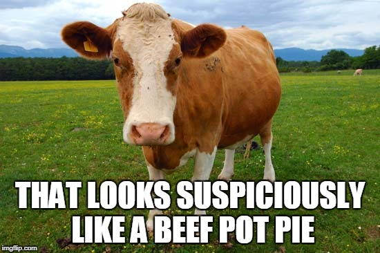 THAT LOOKS SUSPICIOUSLY LIKE A BEEF POT PIE | made w/ Imgflip meme maker