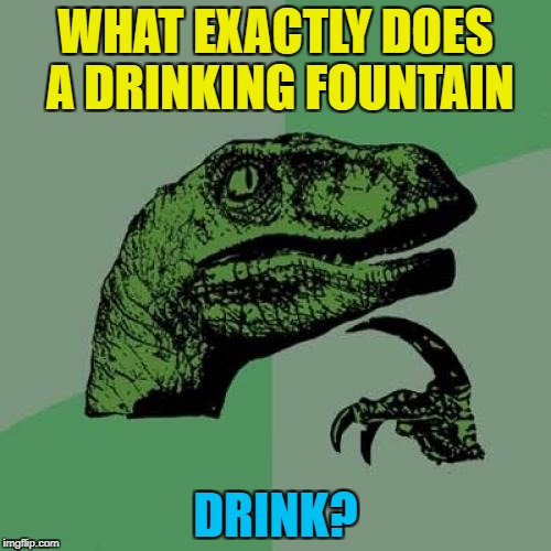 Inspired by hhzlwood | WHAT EXACTLY DOES A DRINKING FOUNTAIN DRINK? | image tagged in memes,philosoraptor,drinking fountain,drink | made w/ Imgflip meme maker