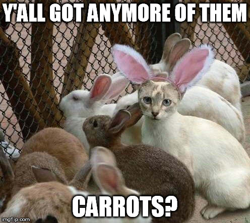 Y'ALL GOT ANYMORE OF THEM CARROTS? | made w/ Imgflip meme maker