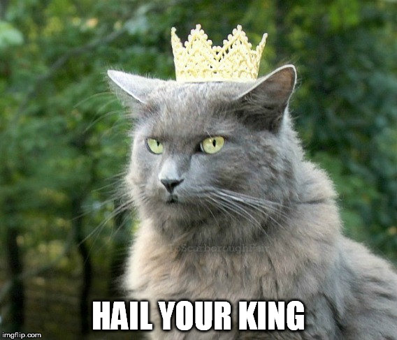 HAIL YOUR KING | made w/ Imgflip meme maker