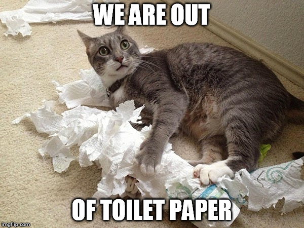 WE ARE OUT OF TOILET PAPER | made w/ Imgflip meme maker