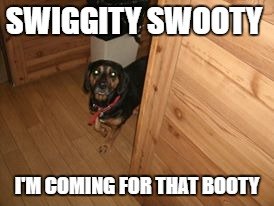 I'm coming for that booty | SWIGGITY SWOOTY I'M COMING FOR THAT BOOTY | image tagged in dog | made w/ Imgflip meme maker