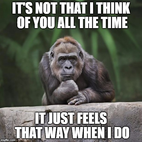 Thinking gorilla | IT'S NOT THAT I THINK OF YOU ALL THE TIME IT JUST FEELS THAT WAY WHEN I DO | image tagged in thinking gorilla | made w/ Imgflip meme maker