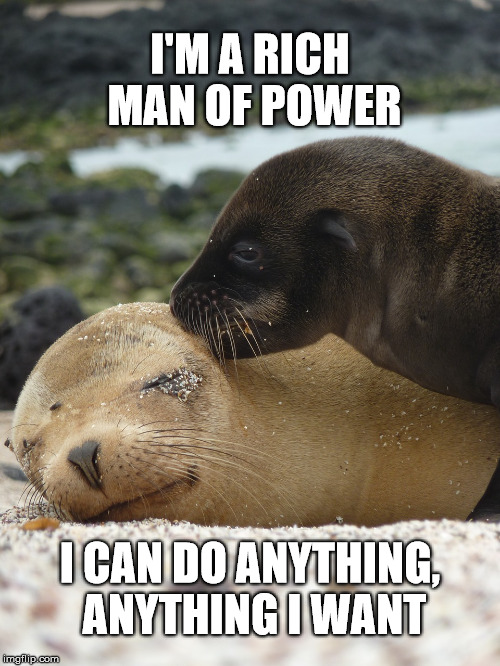 Sick with power | I'M A RICH MAN OF POWER I CAN DO ANYTHING, ANYTHING I WANT | image tagged in memes,animals,sexual assault,hollywood,speak up | made w/ Imgflip meme maker