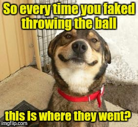 So every time you faked throwing the ball this is where they went? | made w/ Imgflip meme maker
