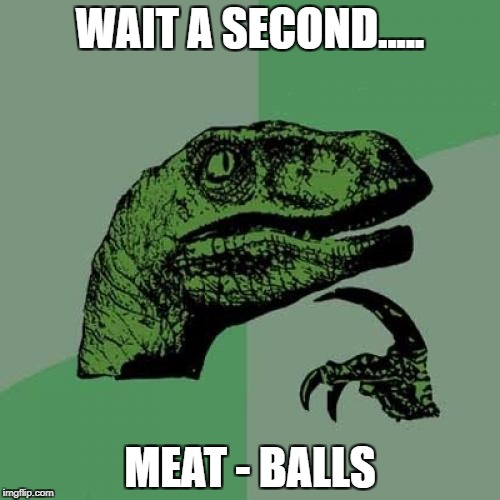 Philosoraptor Meme | WAIT A SECOND..... MEAT - BALLS | image tagged in memes,philosoraptor | made w/ Imgflip meme maker