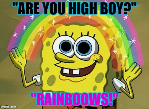 "High | ""ARE YOU HIGH BOY?"" ""RAINBOOWS!"" 