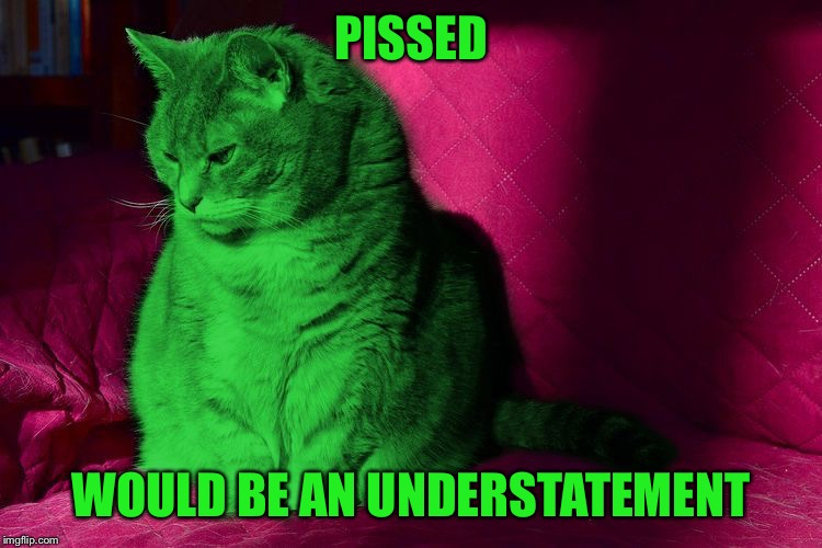 Cantankerous RayCat | PISSED WOULD BE AN UNDERSTATEMENT | image tagged in cantankerous raycat | made w/ Imgflip meme maker