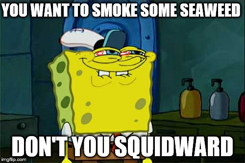 Dont You Squidward | YOU WANT TO SMOKE SOME SEAWEED DON'T YOU SQUIDWARD | image tagged in memes,dont you squidward,pot,smoke weed,weed,smoking weed | made w/ Imgflip meme maker