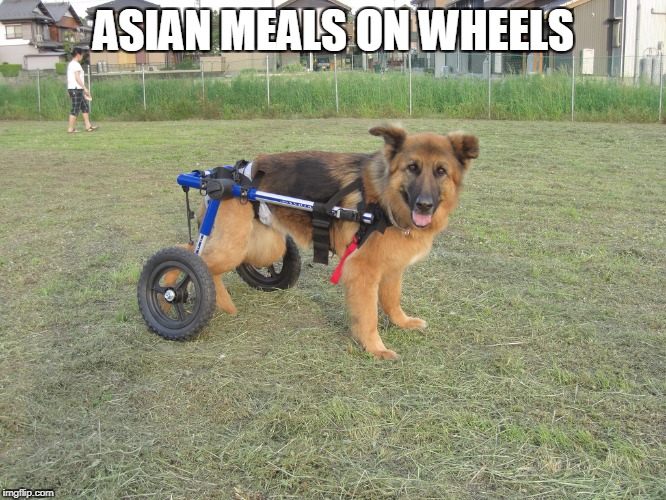 My friends are Retarded | ASIAN MEALS ON WHEELS | image tagged in asian,disability,memes,dog,cat,clickbait | made w/ Imgflip meme maker