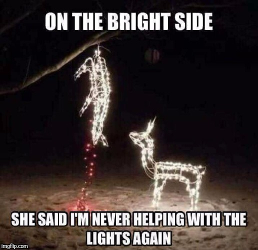 image tagged in deer,lights | made w/ Imgflip meme maker