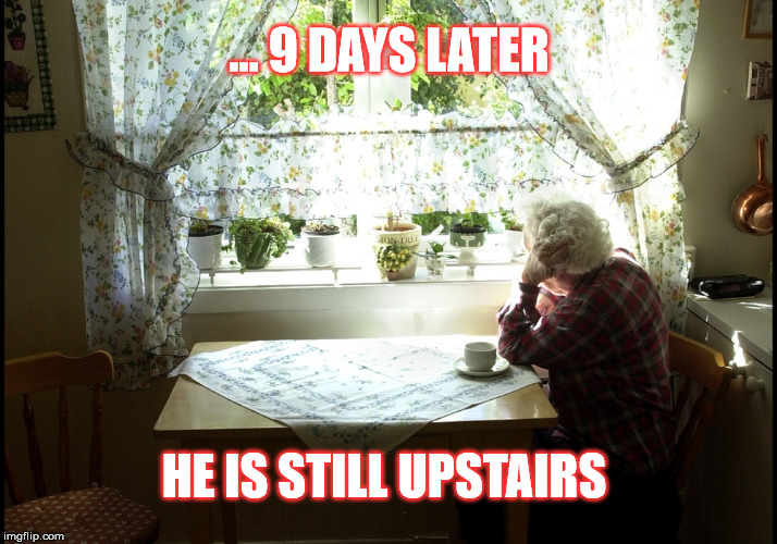 ... 9 DAYS LATER HE IS STILL UPSTAIRS | made w/ Imgflip meme maker