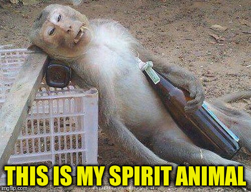 THIS IS MY SPIRIT ANIMAL | made w/ Imgflip meme maker