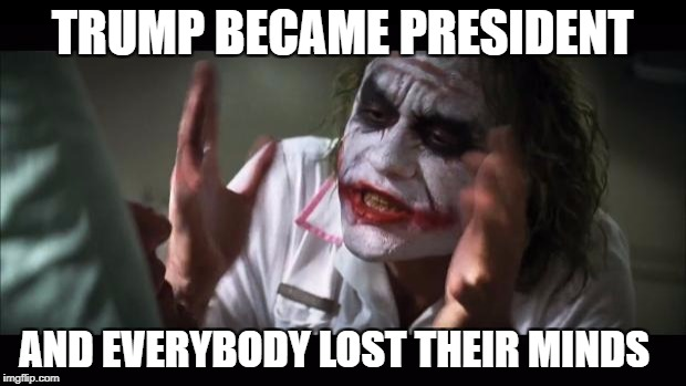 And everybody loses their minds Meme | TRUMP BECAME PRESIDENT AND EVERYBODY LOST THEIR MINDS | image tagged in memes,and everybody loses their minds | made w/ Imgflip meme maker