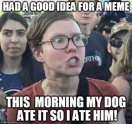 triggered wench | HAD A GOOD IDEA FOR A MEME THIS  MORNING MY DOG ATE IT SO I ATE HIM! | image tagged in triggered feminist,dog ate it | made w/ Imgflip meme maker