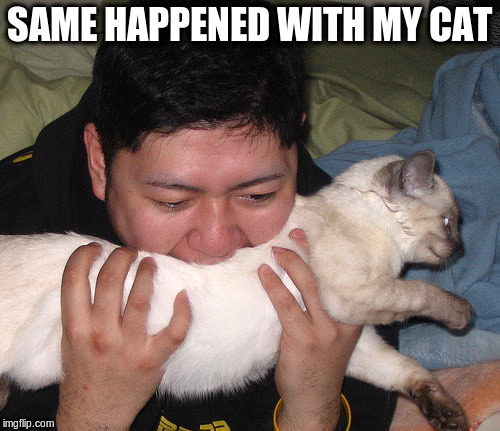 SAME HAPPENED WITH MY CAT | made w/ Imgflip meme maker