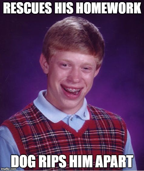 Bad Luck Brian Meme | RESCUES HIS HOMEWORK DOG RIPS HIM APART | image tagged in memes,bad luck brian | made w/ Imgflip meme maker