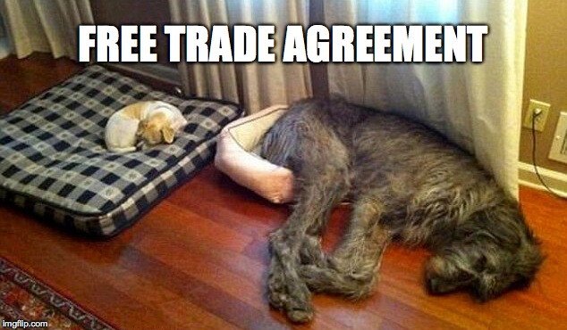 Trading Partners | FREE TRADE AGREEMENT | image tagged in big and little doggo | made w/ Imgflip meme maker