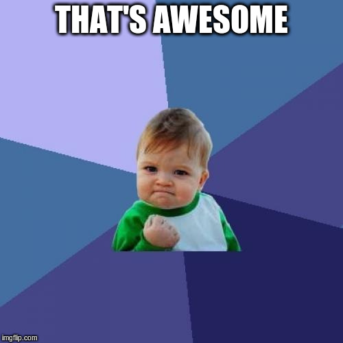Success Kid Meme | THAT'S AWESOME | image tagged in memes,success kid | made w/ Imgflip meme maker