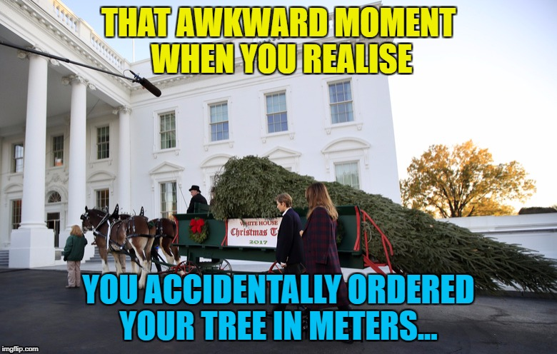 We're gonna need a bigger box of decorations... :) | THAT AWKWARD MOMENT WHEN YOU REALISE YOU ACCIDENTALLY ORDERED YOUR TREE IN METERS... | image tagged in memes,christmas tree,metric,white house,christmas,mistakes | made w/ Imgflip meme maker