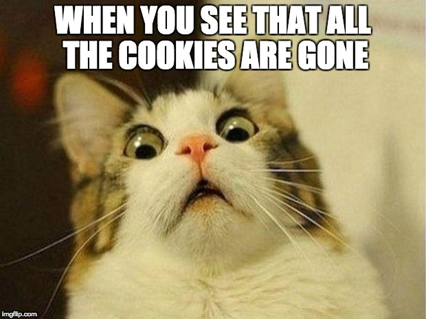 when you see the cookies are gone | WHEN YOU SEE THAT ALL THE COOKIES ARE GONE | image tagged in memes,scared cat,funny,cookies are gone | made w/ Imgflip meme maker