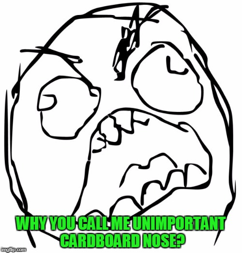 WHY YOU CALL ME UNIMPORTANT CARDBOARD NOSE? | image tagged in raging troll face | made w/ Imgflip meme maker