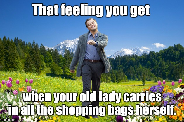 That feeling you get when your old lady carries in all the shopping bags herself. | made w/ Imgflip meme maker