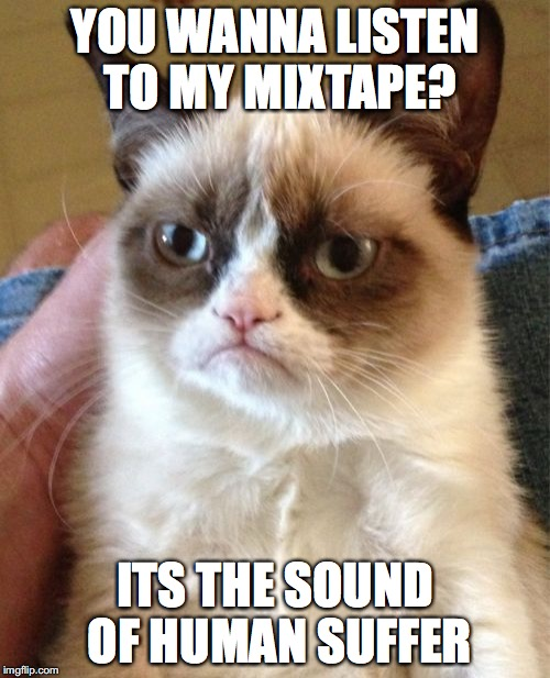 Grumpy Cat Meme | YOU WANNA LISTEN TO MY MIXTAPE? ITS THE SOUND OF HUMAN SUFFER | image tagged in memes,grumpy cat | made w/ Imgflip meme maker