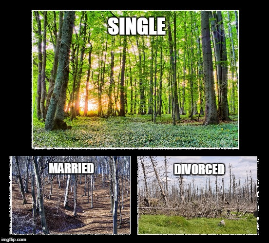 Single - Married - Divorced | SINGLE MARRIED DIVORCED | image tagged in single,married,divorce | made w/ Imgflip meme maker