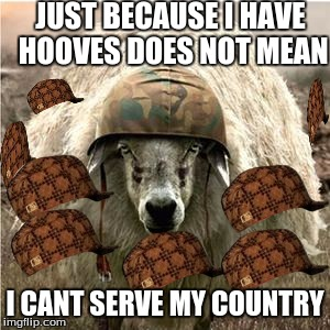 Sheep soilder | JUST BECAUSE I HAVE HOOVES DOES NOT MEAN I CANT SERVE MY COUNTRY | image tagged in sheep soilder,scumbag | made w/ Imgflip meme maker