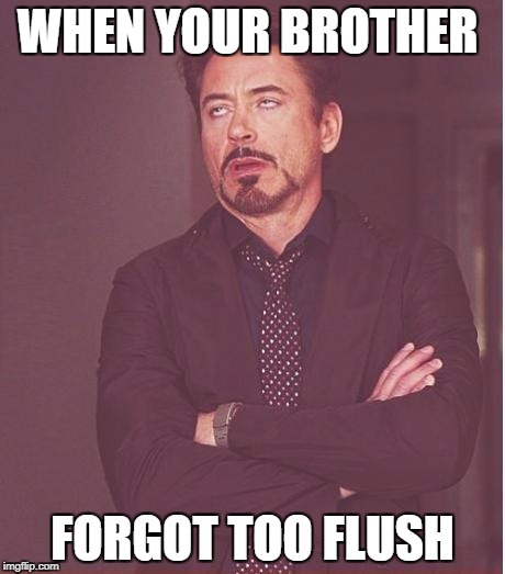 Face You Make Robert Downey Jr Meme | WHEN YOUR BROTHER FORGOT TOO FLUSH | image tagged in memes,face you make robert downey jr | made w/ Imgflip meme maker