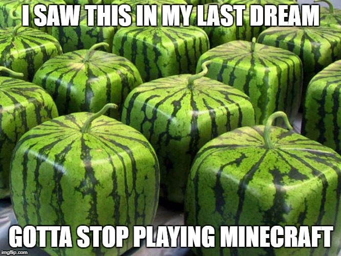 I SAW THIS IN MY LAST DREAM GOTTA STOP PLAYING MINECRAFT | image tagged in minecraft melons | made w/ Imgflip meme maker