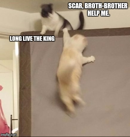 Lion King Live | SCAR, BROTH-BROTHER HELP ME. LONG LIVE THE KING | image tagged in memes,lion king | made w/ Imgflip meme maker